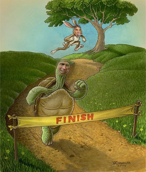 Der Hase Und Die Schildkröte Die Schildkroete Und Der Hase